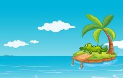 Een alligator bij het kleine eiland stock illustratie