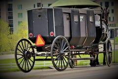 Een Amish-Paard en Met fouten royalty-vrije stock fotografie