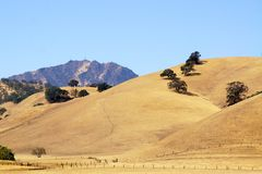 Een andere mening van MT Diablo, Walnut Creek, CA stock foto's