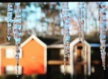 Een andere meningsvlek van de winter Stock Foto