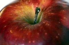 Een appel Stock Fotografie