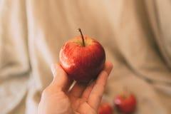 Een appel een dag houdt weg de arts Sluit omhoog mening van rode appel ter beschikking stock foto's