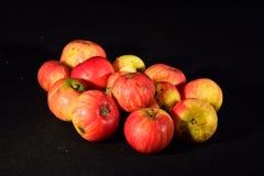 Een appel een dag… Stock Foto's
