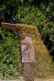 Een Arbeider spreidde maïsgewas voor het drogen uit Stock Foto's