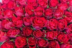 Een armvol rode, verse rozen in een boeket royalty-vrije stock afbeeldingen