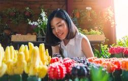 Een Aziatische jonge vrouw bekijkt de kleine cactus Royalty-vrije Stock Foto's