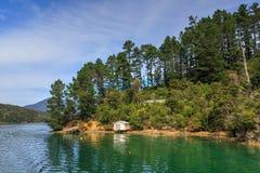 Een baai in de Marlborough-Geluiden, Nieuw Zeeland stock foto's