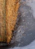 Een baal van hooi in de winter Stock Foto's
