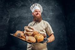 Een bakker die een eenvormig holdingsdienblad met vers voorbereide producten van zijn bakkerij dragen stock fotografie