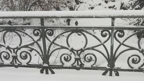 Een balustrade van een brug in de winter Royalty-vrije Stock Afbeeldingen