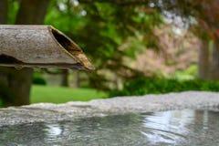 Een bamboepijp die langzaam water druipen stock foto's