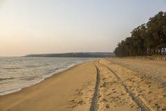 Een band volgt van een auto in het zand van een overzees strand tegen de achtergrond van het overzees en de groene bomen royalty-vrije stock afbeeldingen