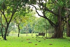 Een bank in het groene park Stock Afbeelding