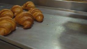 Een banketbakker giet vers gebakken gebakjes met een gouden korst in een dienblad uit, croissants stock footage