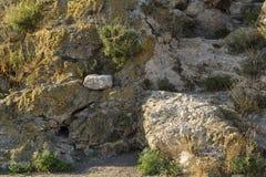 Een barst in het rotsfragment stock afbeelding