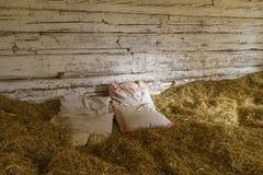 Een bed in het hooi stock afbeelding