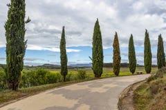 Een bedekte weg die tot het Reservoir van La Grajera of van La Grajera van Pantano DE dichtbij Logrono, La Rioja, Spanje leiden royalty-vrije stock afbeeldingen