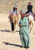 Een Bedouin mens die zich op de achtergrond van kamelen met toeristen het berijden bevinden Royalty-vrije Stock Afbeeldingen