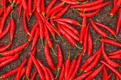 een beeld van de herfst Spaanse peper het drogen stock foto