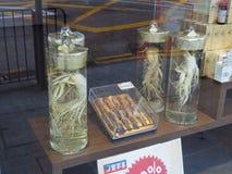 Een beeld van ginseng die voor verkoop dichtbij Sheung Bleek in Hong Kong worden aangeboden In China is het stock foto