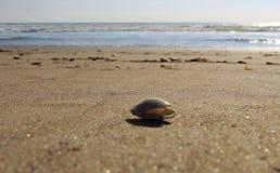 Een beeld van het strand Stock Foto's