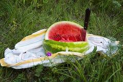 Een beeld van een watermeloen op het gras Stock Foto