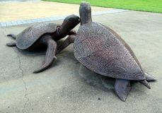 Een beeldhouwwerk die schildpadden afschilderen bij het begin van het koppelen langs een riviergang door Aborigin Royalty-vrije Stock Foto's