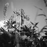 Een begraafplaats bij het dorp Kvilda in de Tsjechische Republiek stock foto's