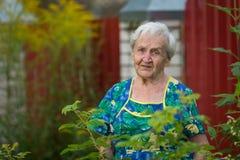 Een bejaarde bevindt zich openlucht gelukkig royalty-vrije stock foto's