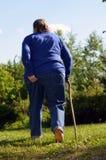 Een bejaarde in de tuin Stock Afbeeldingen