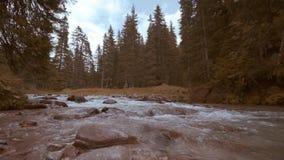 Een bergstroom van water stroomt in het midden van de oranje rotsen en het hout van de herfst stock video