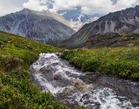 Een bergstroom vloeit door de weide stock fotografie