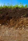 Een besnoeiing van grond Stock Afbeelding
