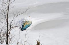 Een bevroren meer vangt een boot Stock Fotografie