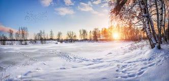 Een bevroren vijver en snow-covered bomen stock fotografie