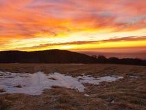 Een bewolkte dageraad boven inversie en heuvels. De donkere pieken van bomen maken contrast met gele en oranje wolken op de hemel, Stock Afbeelding