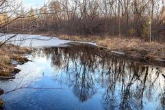 Een bewolkte de herfstavond in het bos op de rivier Oostelijk Siberië Stock Afbeeldingen
