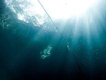 Een bezinning van een zwemmer van onderwater Stock Foto