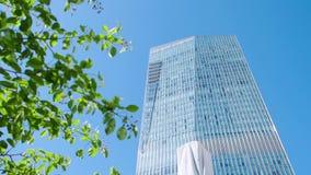 Een blad en de bouw voorraad De moderne bureaubouw door de bladeren van een boom bedrijfs en aardconcept stock footage