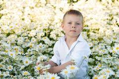 Een blauw-eyed jongen bevindt zich op een madeliefjegebied Royalty-vrije Stock Fotografie