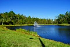 Een blauw meer in de palmen van Tamper Stock Afbeeldingen