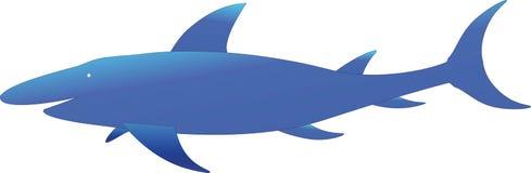 Een blauwe haai Royalty-vrije Stock Foto's