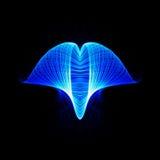 Blauwe werveling - Blauwe lichte sleep Stock Afbeeldingen