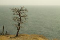 een blik van eenzaamheid aan oneindigheid stock foto's