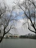 een blik van Zhejiang Univerdity Royalty-vrije Stock Foto's
