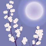 Een bloeiende boom. vector illustratie
