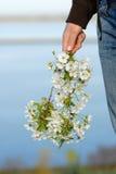 Een bloem in de hand van een meisje Royalty-vrije Stock Afbeeldingen