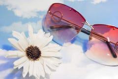 Een bloem en zonnebril stock foto