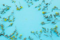 Een bloemenpatroon van witte wildflowers, groene bladeren, takken op een blauwe achtergrond, ruimte voor tekst in het centrum Fla stock fotografie