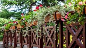 Een Bloemrijk balkon in een park, Georgië stock afbeelding